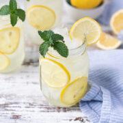 agave mint lemonade glasses